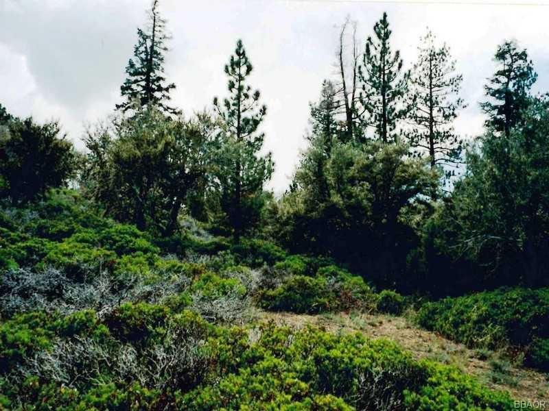 Photo of 0 Highway 38, Big Bear City, CA 92314 (MLS # 2142588)