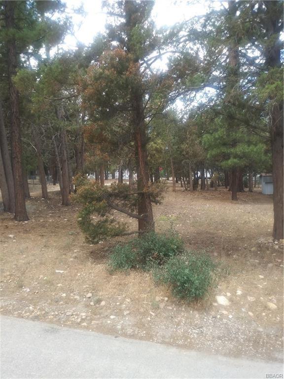 Photo of 0 Cedar Lane, Sugarloaf, CA 92386 (MLS # 32106619)