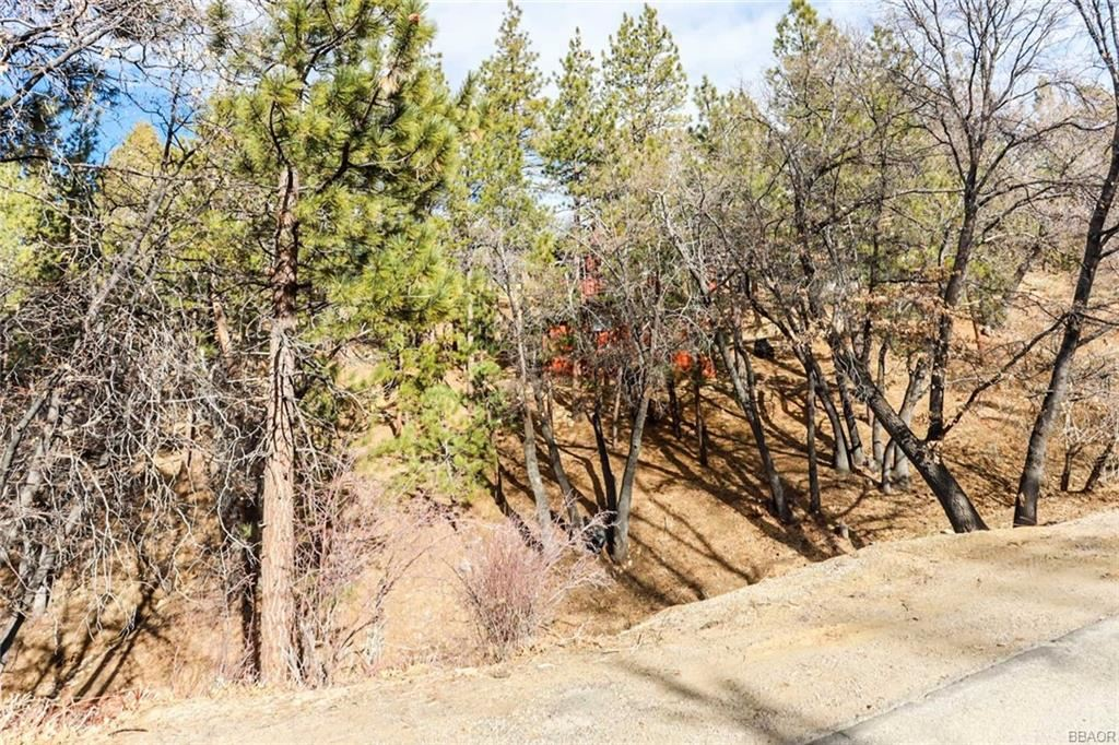 Photo of 1290 Minton, Big Bear City, CA 92314 (MLS # 32008658)