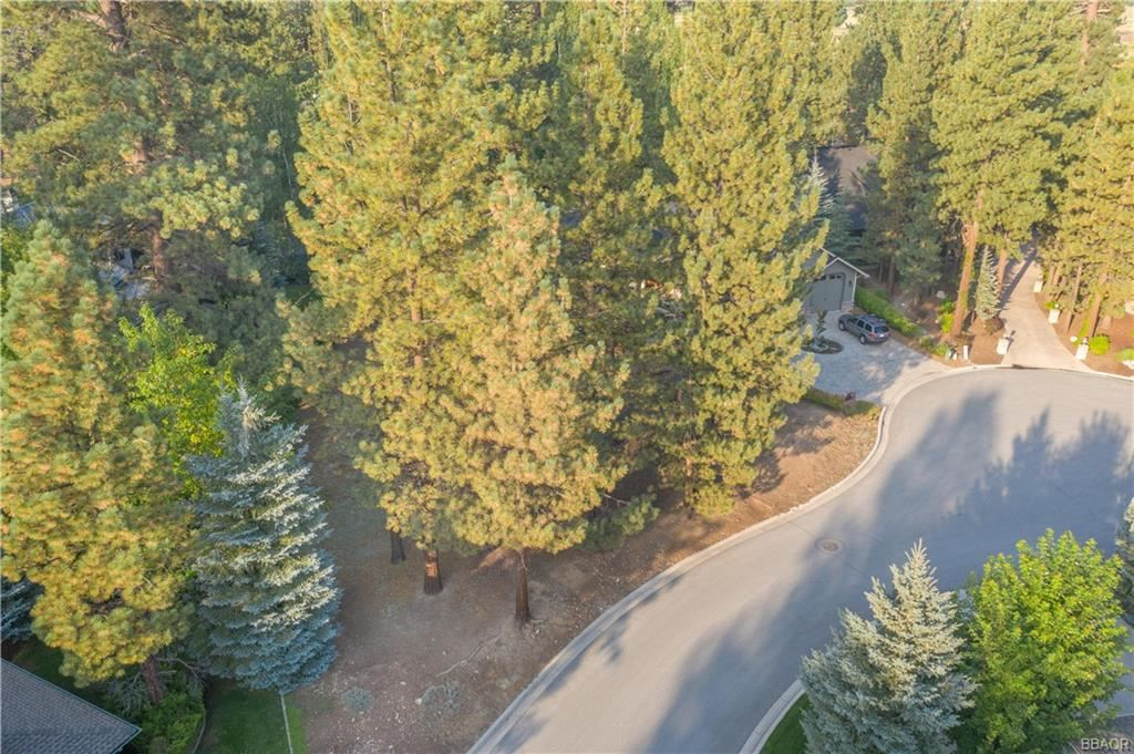 Photo of 41542 Eagle View Drive, Big Bear Lake, CA 92315 (MLS # 32002677)