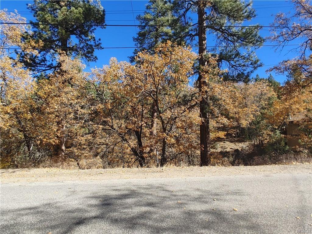 Photo of 1230 S Minton Avenue, Big Bear City, CA 92314 (MLS # 32106689)