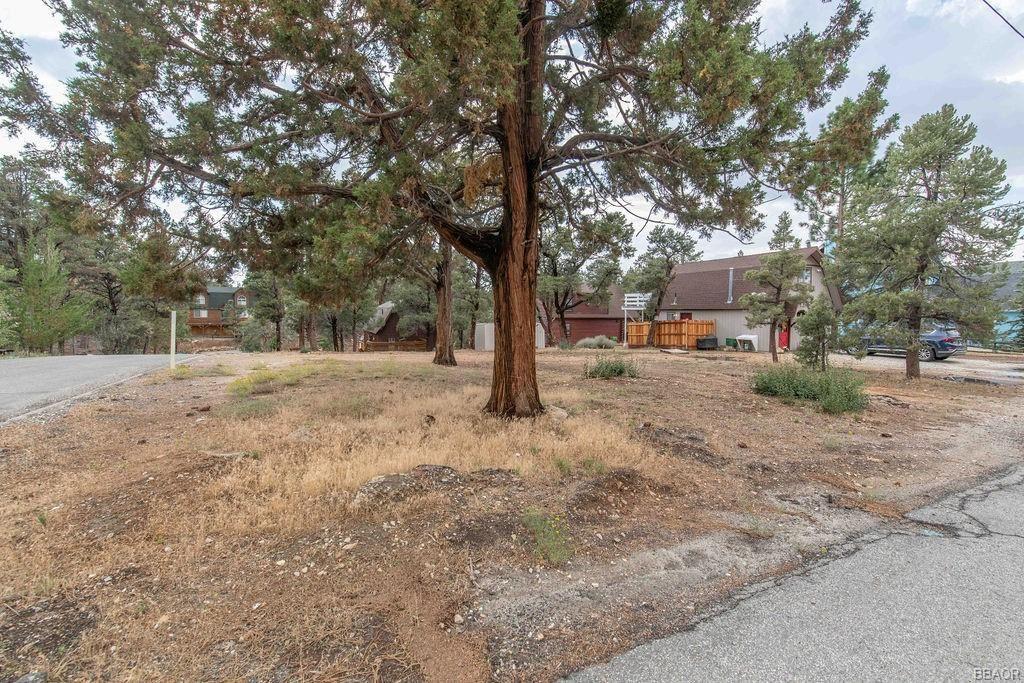 Photo of 0 San Bernardino Avenue, Sugarloaf, CA 92386 (MLS # 32106775)