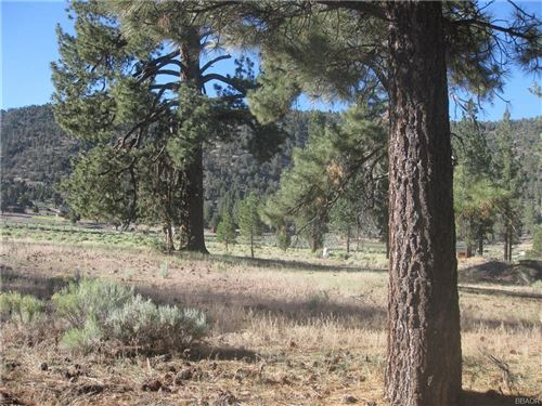 Photo of 2824 Erwin Ranch Road, Big Bear City, CA 92314 (MLS # 32002829)