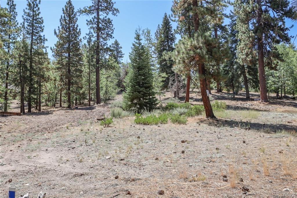 Photo of 39823 Crocus Drive, Big Bear Lake, CA 92315 (MLS # 32106891)