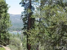 Photo of 40587 Ironwood Drive, Big Bear Lake, CA 92315 (MLS # 32001968)