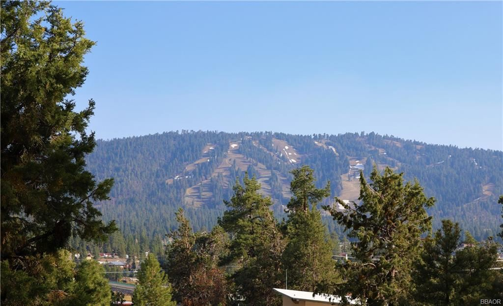 Photo of 39 Lakeview Tract, Fawnskin, CA 92333 (MLS # 32103987)