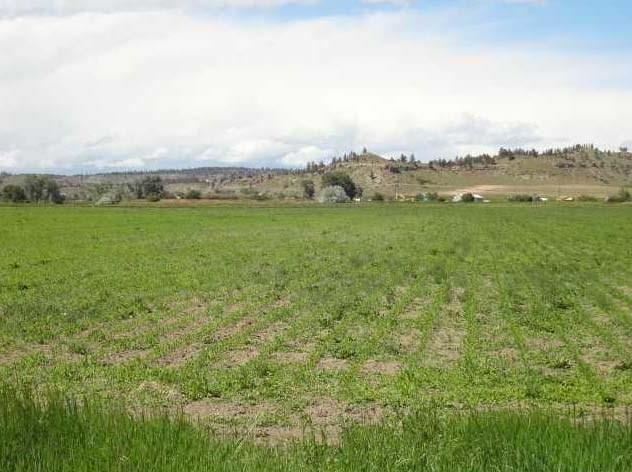 Photo of 47 CENTENNIAL ROAD, Columbus, MT 59019 (MLS # 298119)