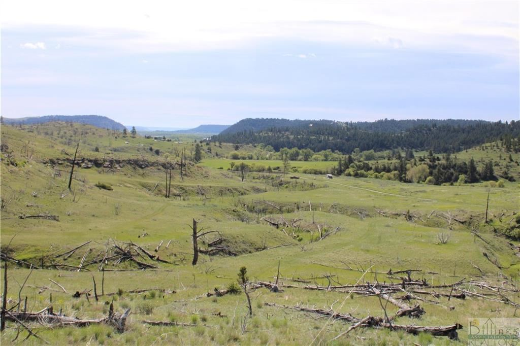 Photo of LOT 197 COYOTE PASS, Columbus, MT 59019 (MLS # 317148)