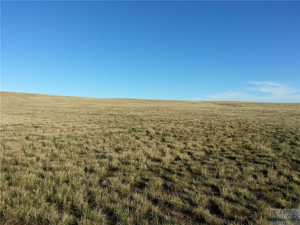 Photo of Lot 8 Patterson Ranch Road, Roberts, MT 59070 (MLS # 315206)