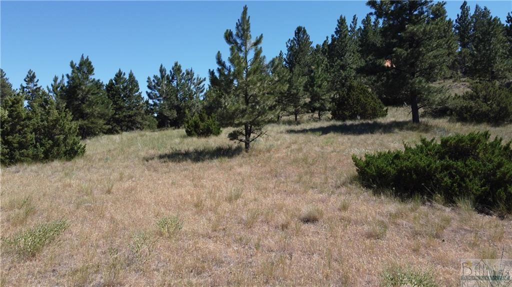 Photo of 69 Colter Trail, Columbus, MT 59019 (MLS # 316391)