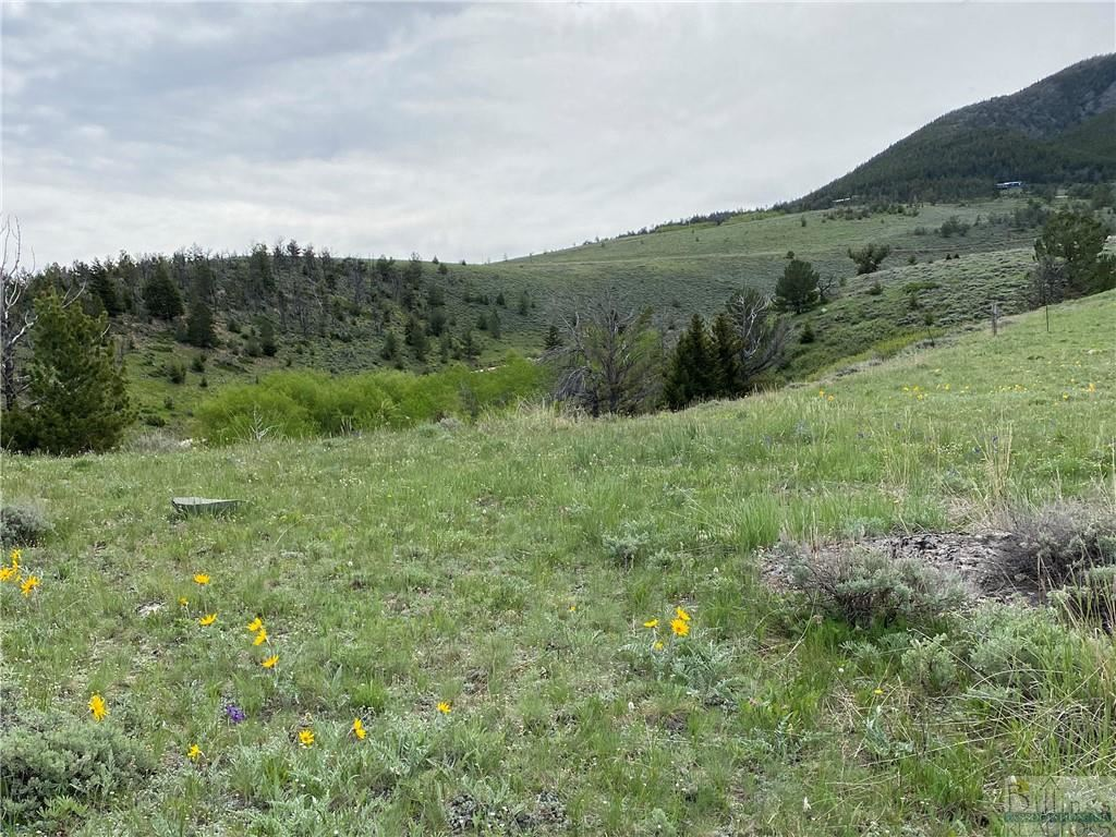 Photo of 1 S Bear Dance Trail TRAIL S, Red Lodge, MT 59068 (MLS # 310863)