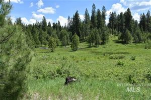 Photo of TBD Silver Stone Court Lot 9, Cascade, ID 83611 (MLS # 98746056)