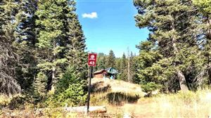 Photo of 730 Whitewater, Donnelly, ID 83615 (MLS # 98727082)