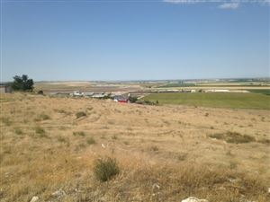 Photo of O Hat Butte Dr, Melba, ID 83641 (MLS # 98707091)