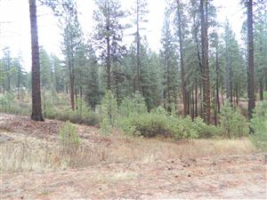 Photo of Lots 14 & 15 Duquette Pines, Idaho City, ID 83631 (MLS # 98700099)