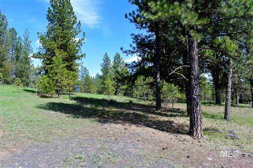 Photo of TBD Syringa Drive, New Meadows, ID 83654 (MLS # 98766149)