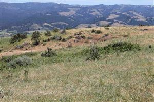 Photo of Coyote Run - 80 Acres, Council, ID 83612 (MLS # 98695223)
