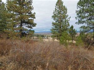 Photo of 13 Elk crossing Drive, Council, ID 83612 (MLS # 98711343)