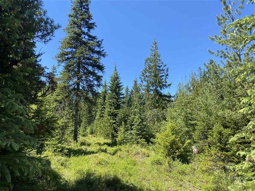 Photo of TBD Parcel B Fox Meadows, Orofino, ID 83544 (MLS # 98808361)