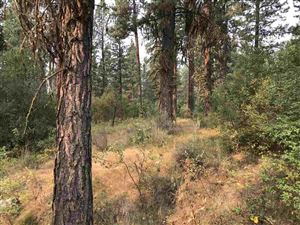Photo of TBD Chipmunk Circle, Idaho City, ID 83631 (MLS # 98704508)