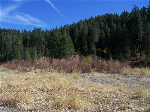 Photo of TBD Peaceful Pines Rd Lot 13, Council, ID 83612 (MLS # 98822660)