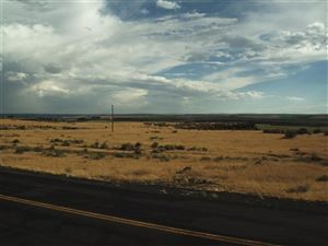 Photo of TBD Ritchie Rd (5.27 AC), Hagerman, ID 83332 (MLS # 98736715)