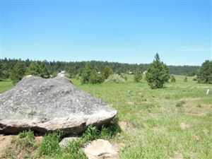 Photo of Lot 3 Whitefield, McCall, ID 83638 (MLS # 98736716)