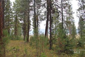 Photo of Lot 28 Timber Ridge Drive, New Meadows, ID 83654 (MLS # 98744732)