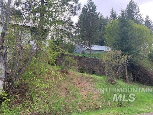 Photo of 38 Happy Hollow Rd, Grangeville, ID 83530 (MLS # 98766753)
