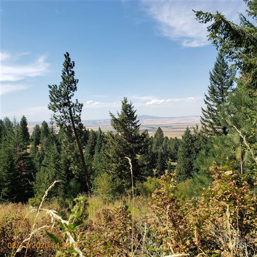 Photo of TBD (Lot 15) Cheyenne Drive, Grangeville, ID 83530 (MLS # 98780889)
