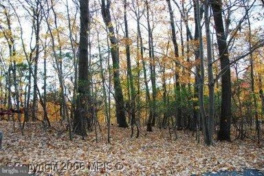 Photo of 2005 RIDGE RD, HAYMARKET, VA 20169 (MLS # 1000027061)