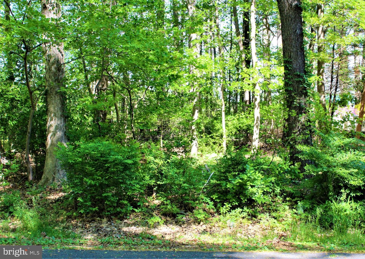 Photo of 88 WHITE HORSE DR, BERLIN, MD 21811 (MLS # MDWO122132)