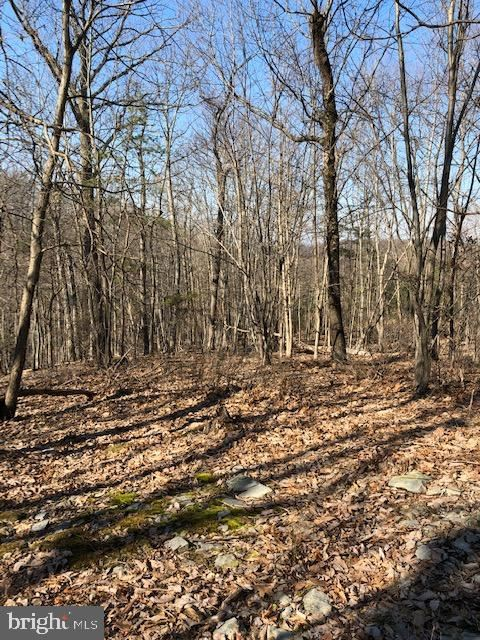 Photo of 21223 BOONSBORO MOUNTAIN RD, BOONSBORO, MD 21713 (MLS # MDWA159340)