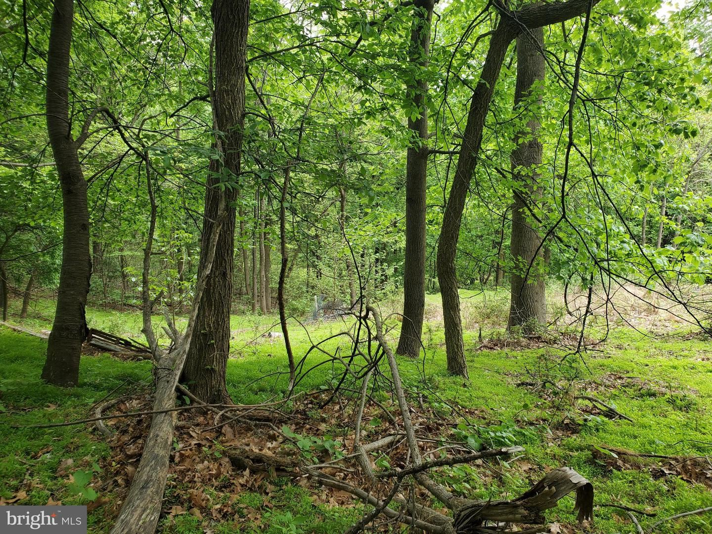 Photo of 1344 HOFFMASTER RD, KNOXVILLE, MD 21758 (MLS # MDWA2001346)
