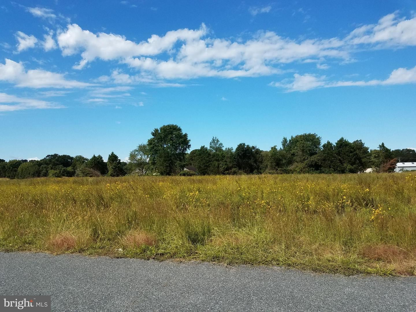 Photo for LOT 5 MARY'S COURT, CAMBRIDGE, MD 21613 (MLS # MDDO126364)