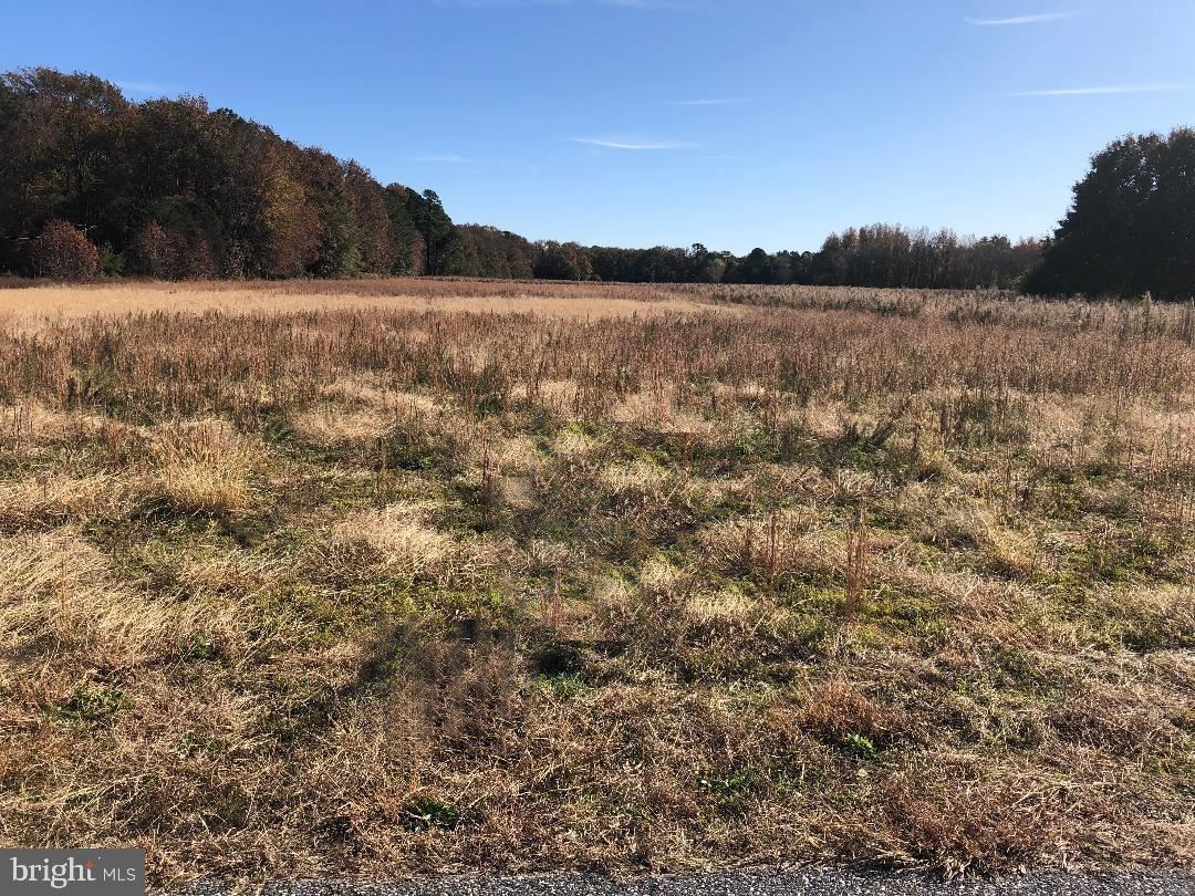 Photo for LOT 3 COLLINS RD, BISHOPVILLE, MD 21813 (MLS # MDWO110378)