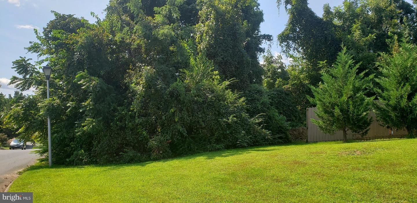 Photo of 4084 WATERVIEW DR, EDGEWATER, MD 21037 (MLS # MDAA2010390)