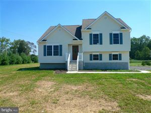 Photo of 138 MARSHALL DR, CENTREVILLE, MD 21617 (MLS # 1009913402)