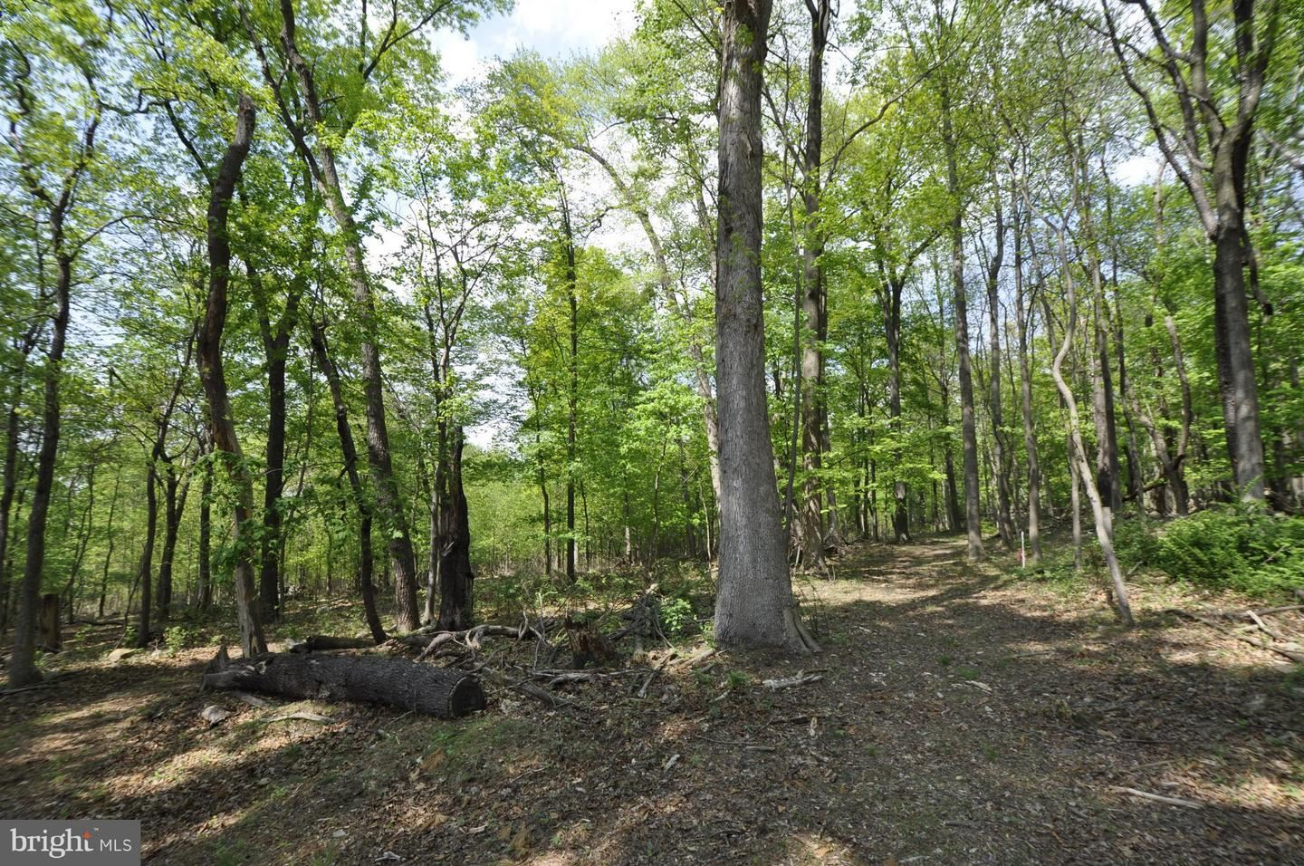 Photo of MOUSETOWN RD, BOONSBORO, MD 21713 (MLS # 1000689480)