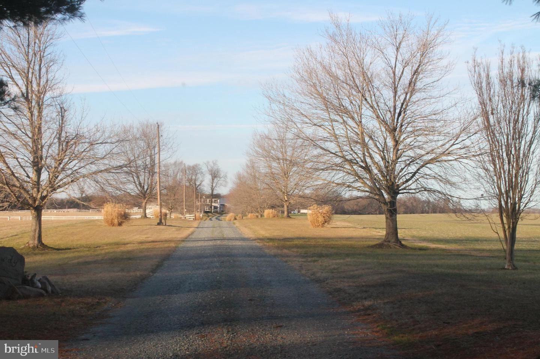 Photo of 211 LONG SHOT FARM LN, CHURCH HILL, MD 21623 (MLS # MDQA142484)