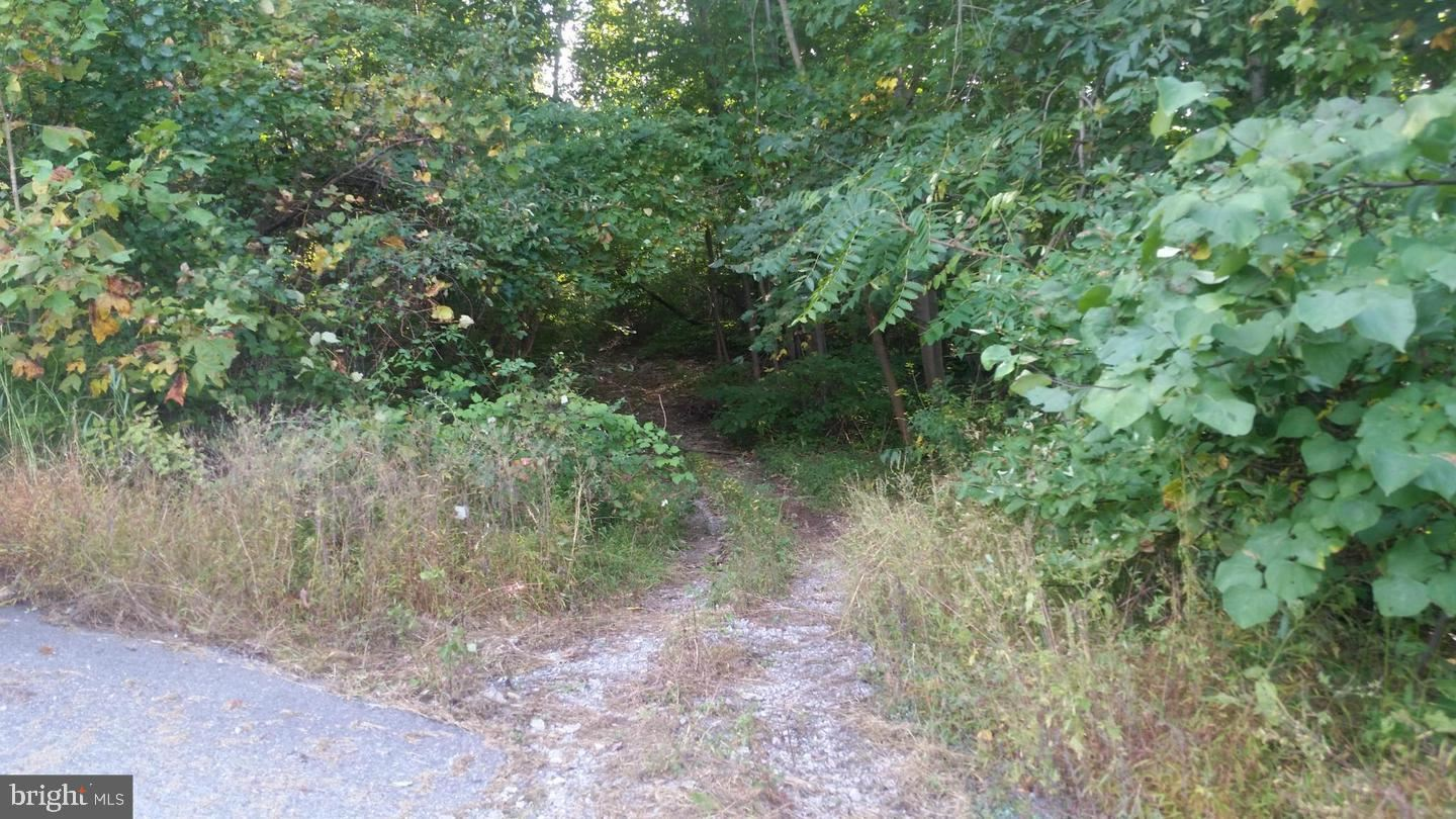 Photo of 10651 CRYSTAL FALLS DR, HAGERSTOWN, MD 21742 (MLS # MDWA174526)