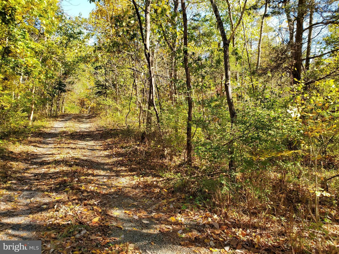Photo of RED HAWK/WOODS WAY, MIDDLETOWN, VA 22645 (MLS # VAWR140540)