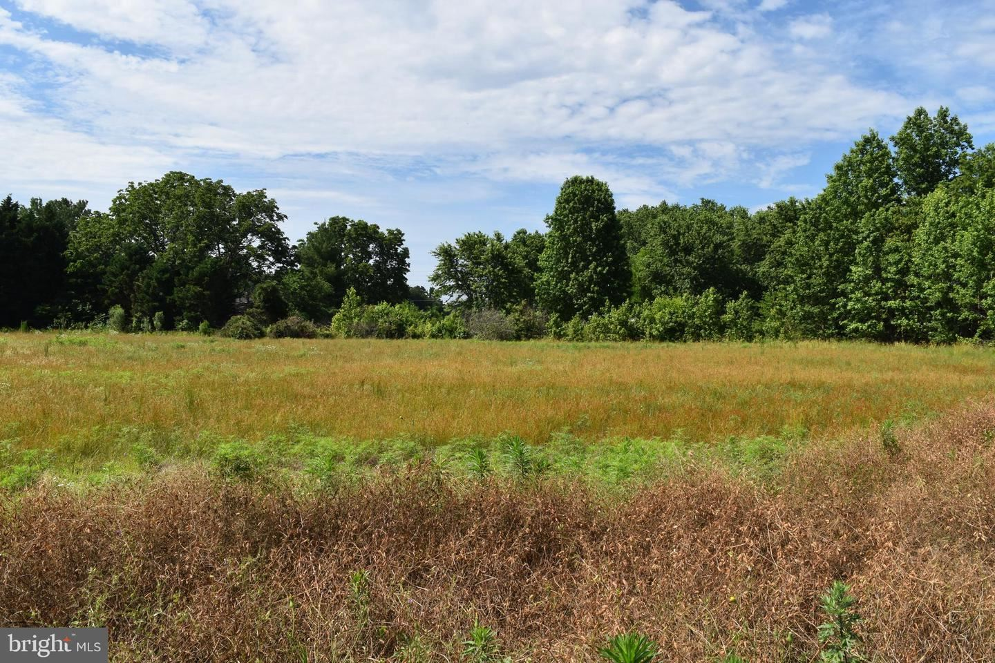 Photo for BEVERLY LANE #13 LOT, CAMBRIDGE, MD 21613 (MLS # MDDO125616)