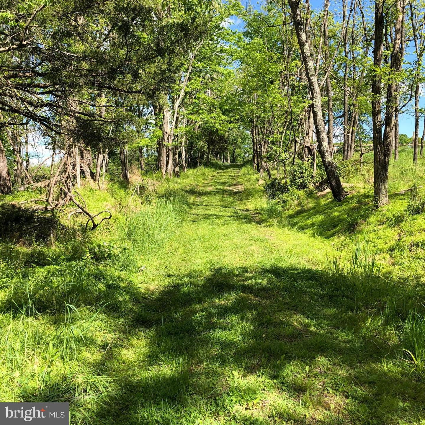 Photo of 8602 COVELL RD, DICKERSON, MD 20842 (MLS # MDFR282648)