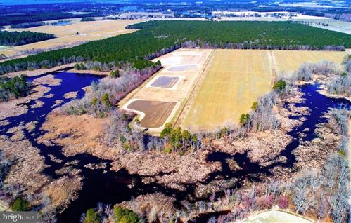 Photo of TAYLORS ISLAND RD, WOOLFORD, MD 21677 (MLS # MDDO124684)