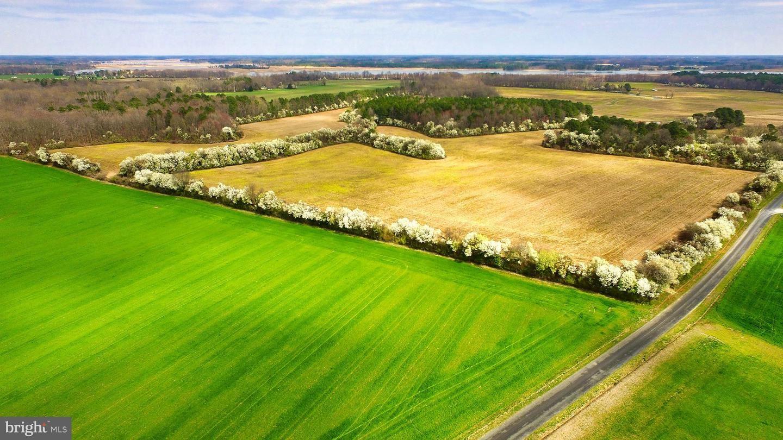 Photo of SPRING FARM, TRAPPE, MD 21673 (MLS # MDTA137692)