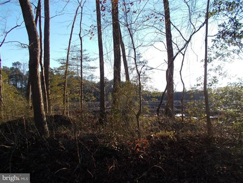 Photo of SPRINGDALE RD, EAST NEW MARKET, MD 21631 (MLS # MDDO124744)