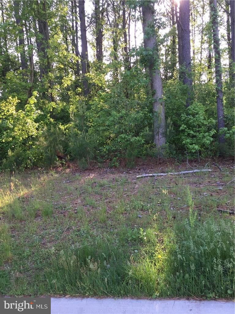 Photo of 0 S. LEE #213, ELLENDALE, DE 19941 (MLS # 1001573798)