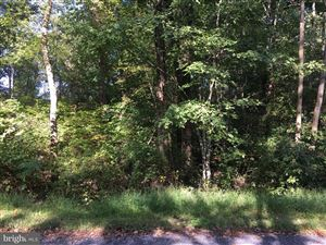 Photo of 128 SAYLERS CREEK RD, LOCUST GROVE, VA 22508 (MLS # 1008348834)
