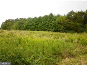 Photo of 0 BRISTERSBURG RD, CATLETT, VA 20119 (MLS # VAFQ155842)